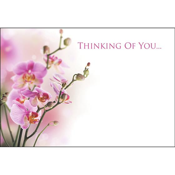 thinking of you florist message card oasis item code 60 00061